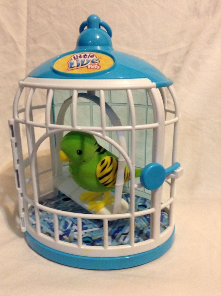 Moose Little Live Pets Bird Cage interactive Frankie Green