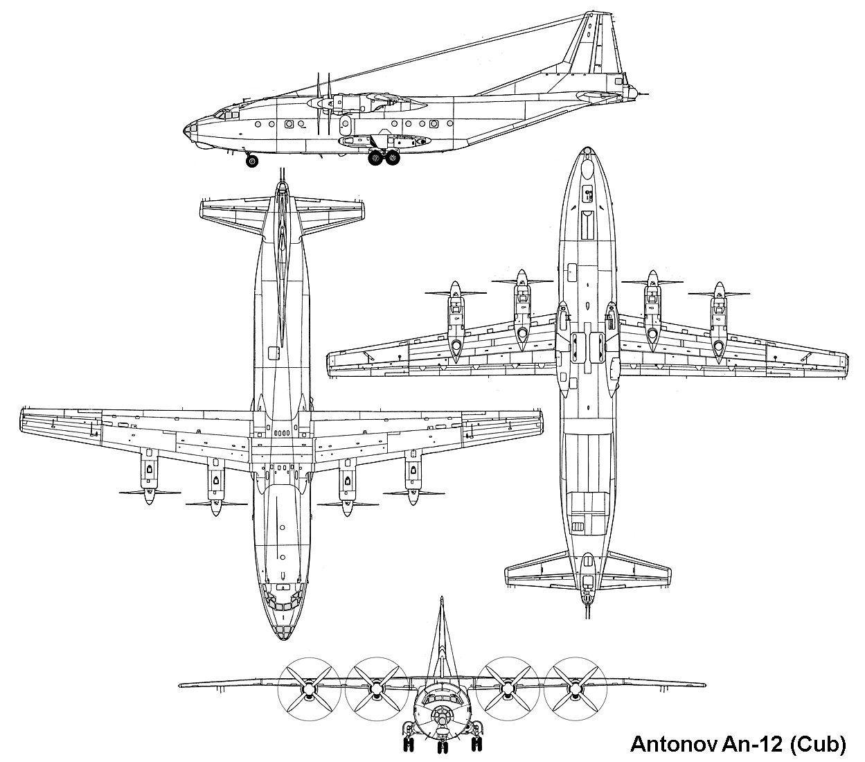 Antonov An 12 Cub