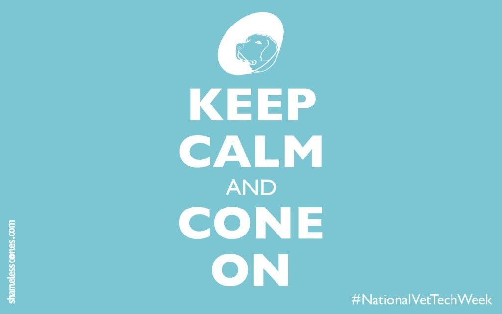 Happy #NationalVetTech...