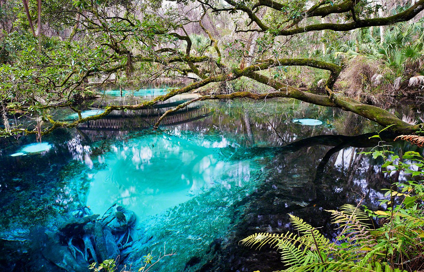 12 Best Places To Visit In Florida Planetware 12