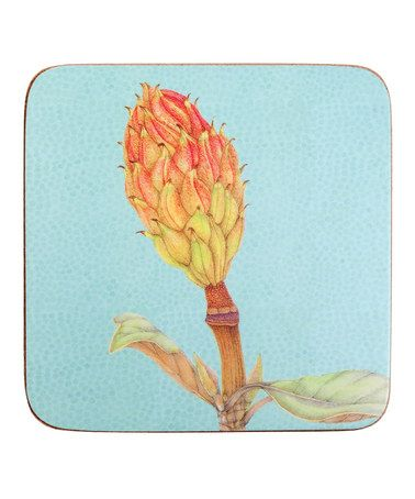 Take a look at this Magnolia Grande Flora Coaster - Set of Eight by rockflowerpaper on #zulily today!