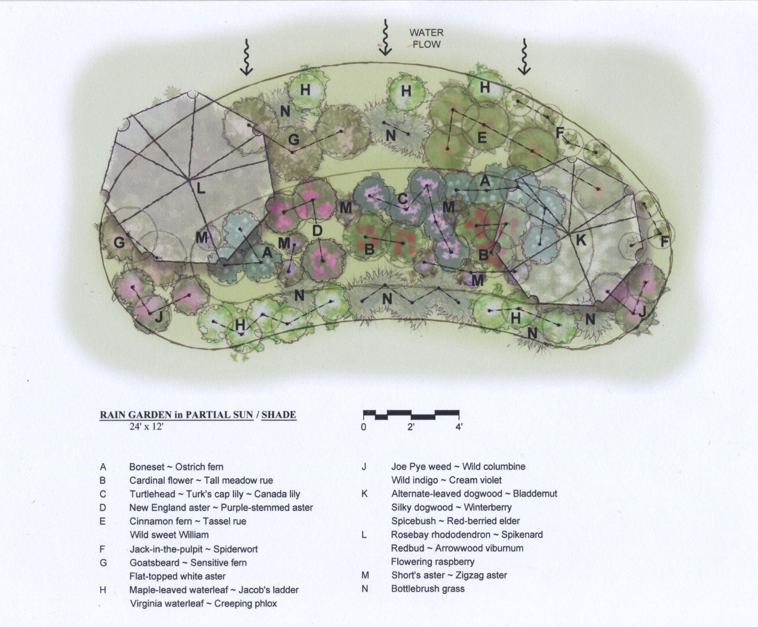 shade landscaping plans | Partial Shade Garden Ideas ...