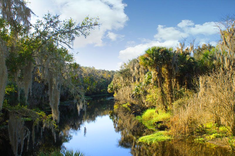 Alafia river a source of drinking water for the tampa bay