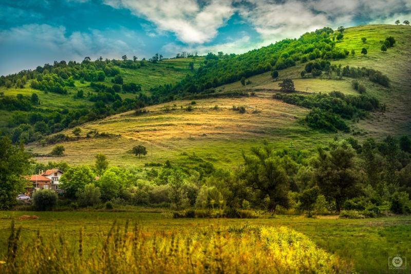 Country Landscape Background Landscape Background Landscape Landscape Trees