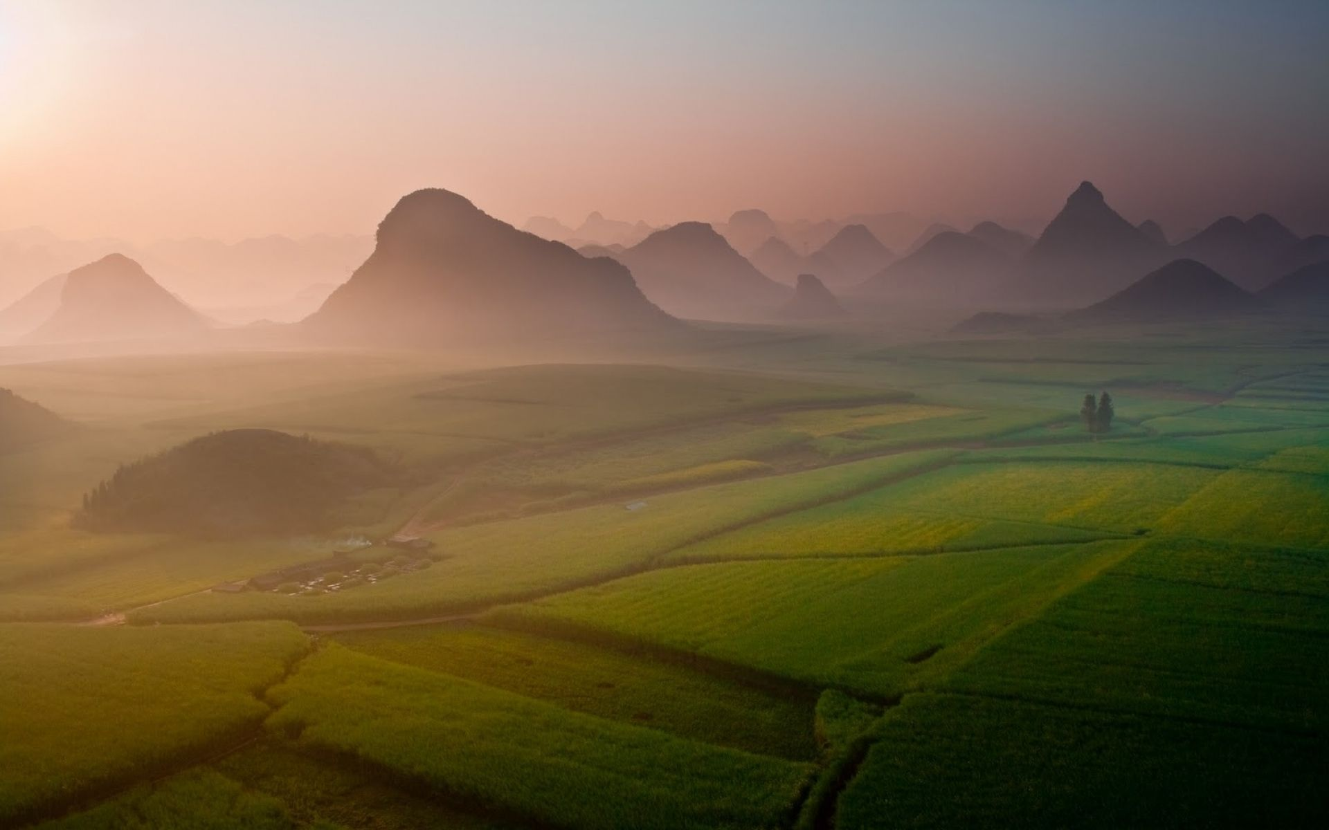 Morning mist on fields in China
