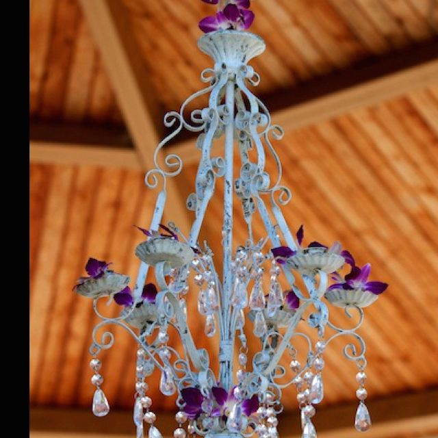 Chandelier With Preserved Orchids B R Events Wedding Planner Greenville SC