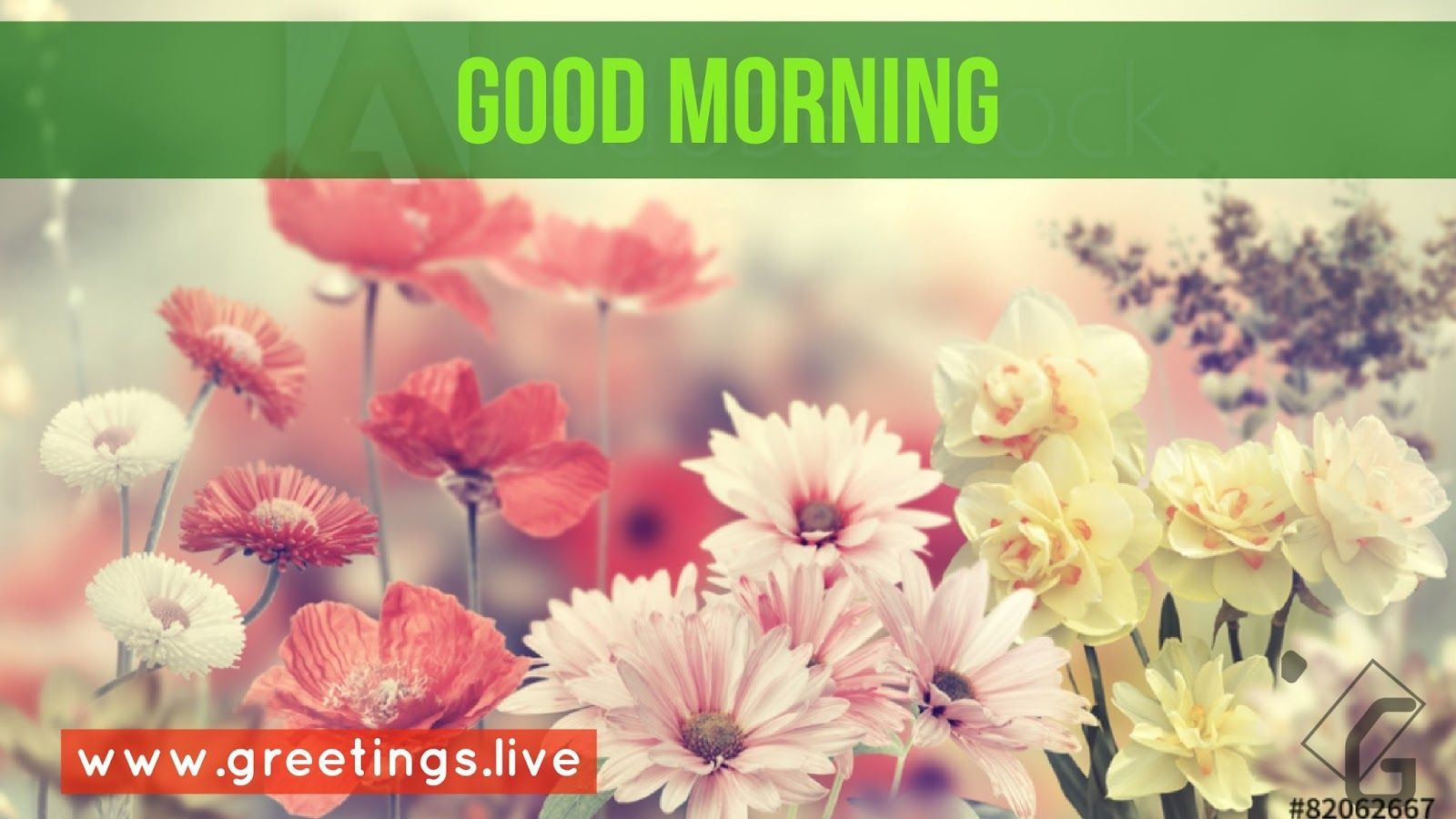 Beautiful Flowers Greeting On Good Morning Time Am Telugu