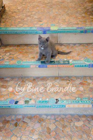Mosaik | glass & heat | Pinterest | Mosaik, Mosaik diy und Selber ...