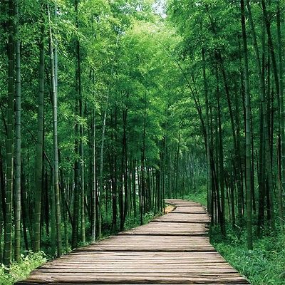 3d Bamboo Forest Road 3764 Wallpaper Decal Decor Home Kids Nursery Mural Home Bamboo Landscape Forest Landscape Beautiful Nature Wallpaper