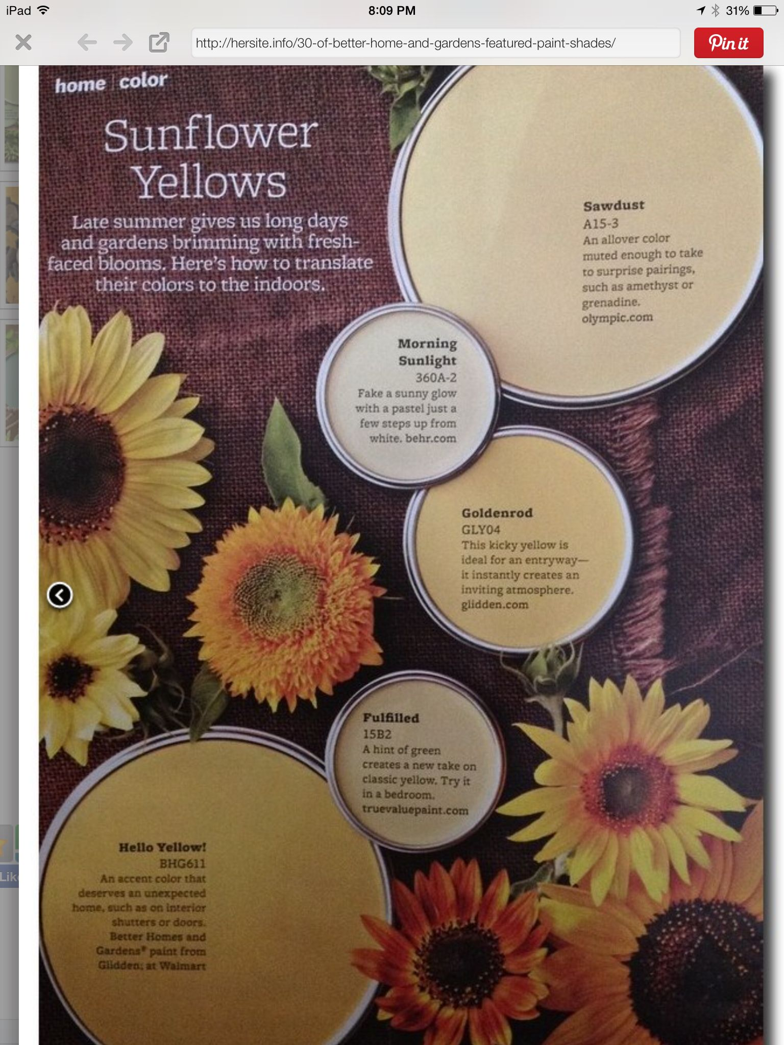 Better Homes and Gardens sunflower Yellows