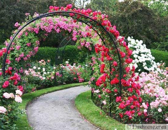 20 metal arches and beautiful yard landscaping ideas for Jardines decoraciones plantas