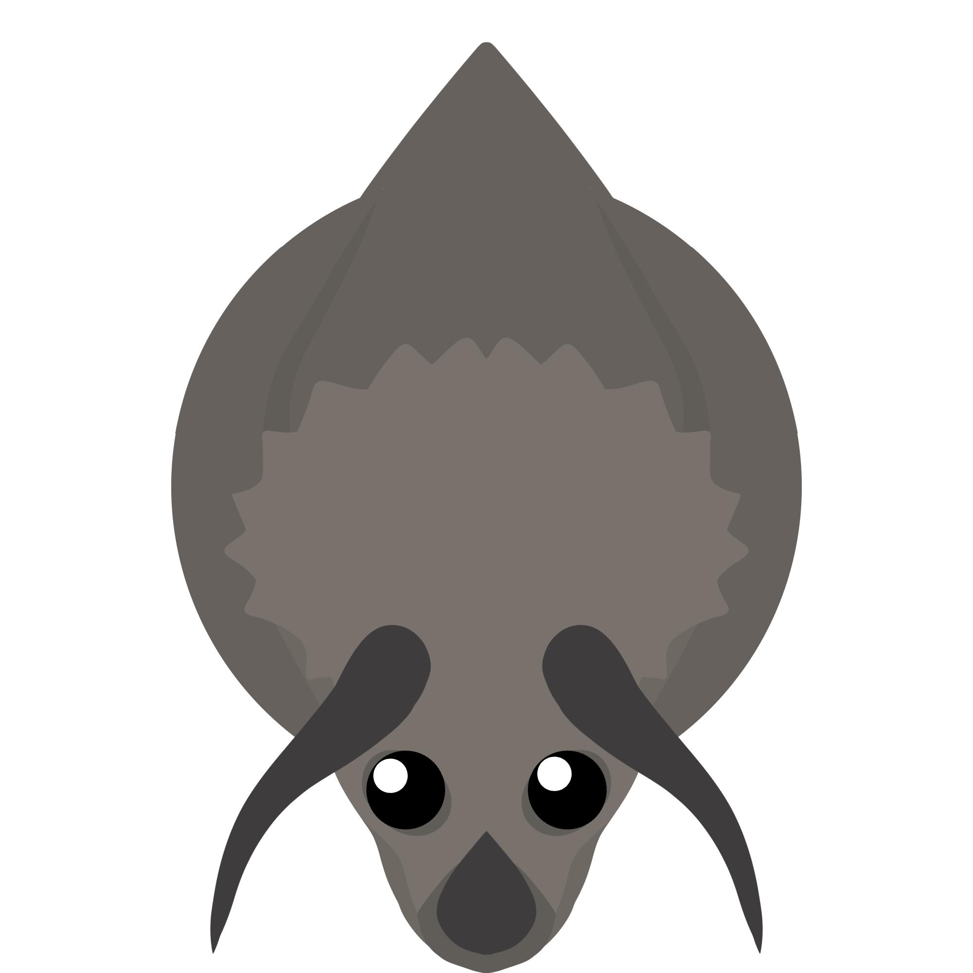 Картинка казуара из мопио