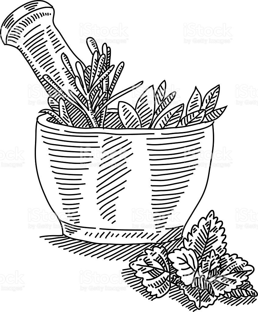 Line drawing of Mortar with herbals it is single layered and