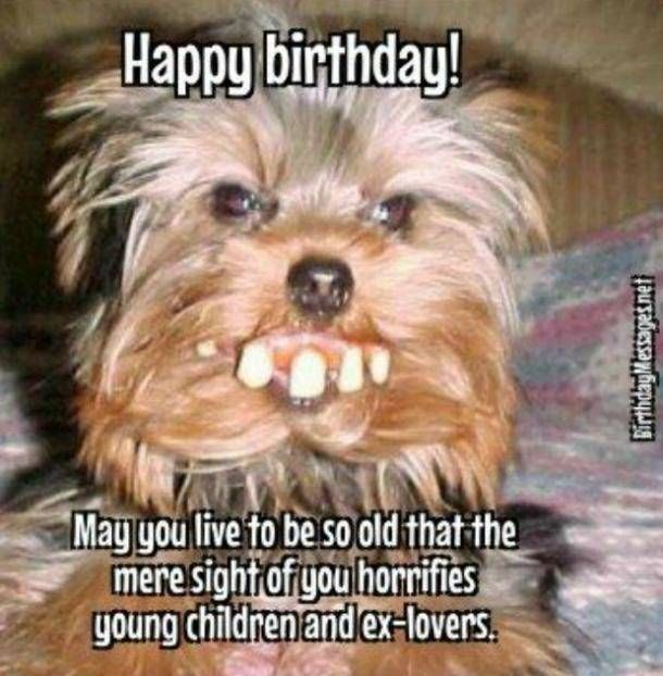 50 Funny Happy Birthday Quotes & Wishes For Best Friends ...