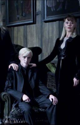Draco Malfoy x Reader | Harry Potter | Harry potter bellatrix