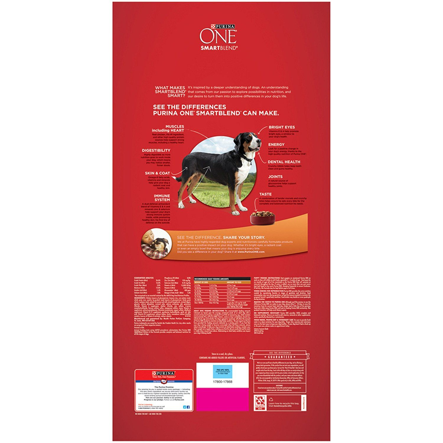Purina ONE SmartBlend Chicken and Rice Formula Dry Dog