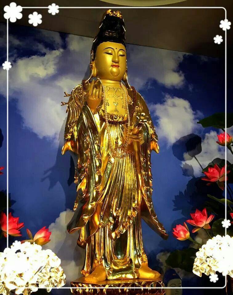 Namo Amituofo Chen Tao Fashi Chen Tao My Profile