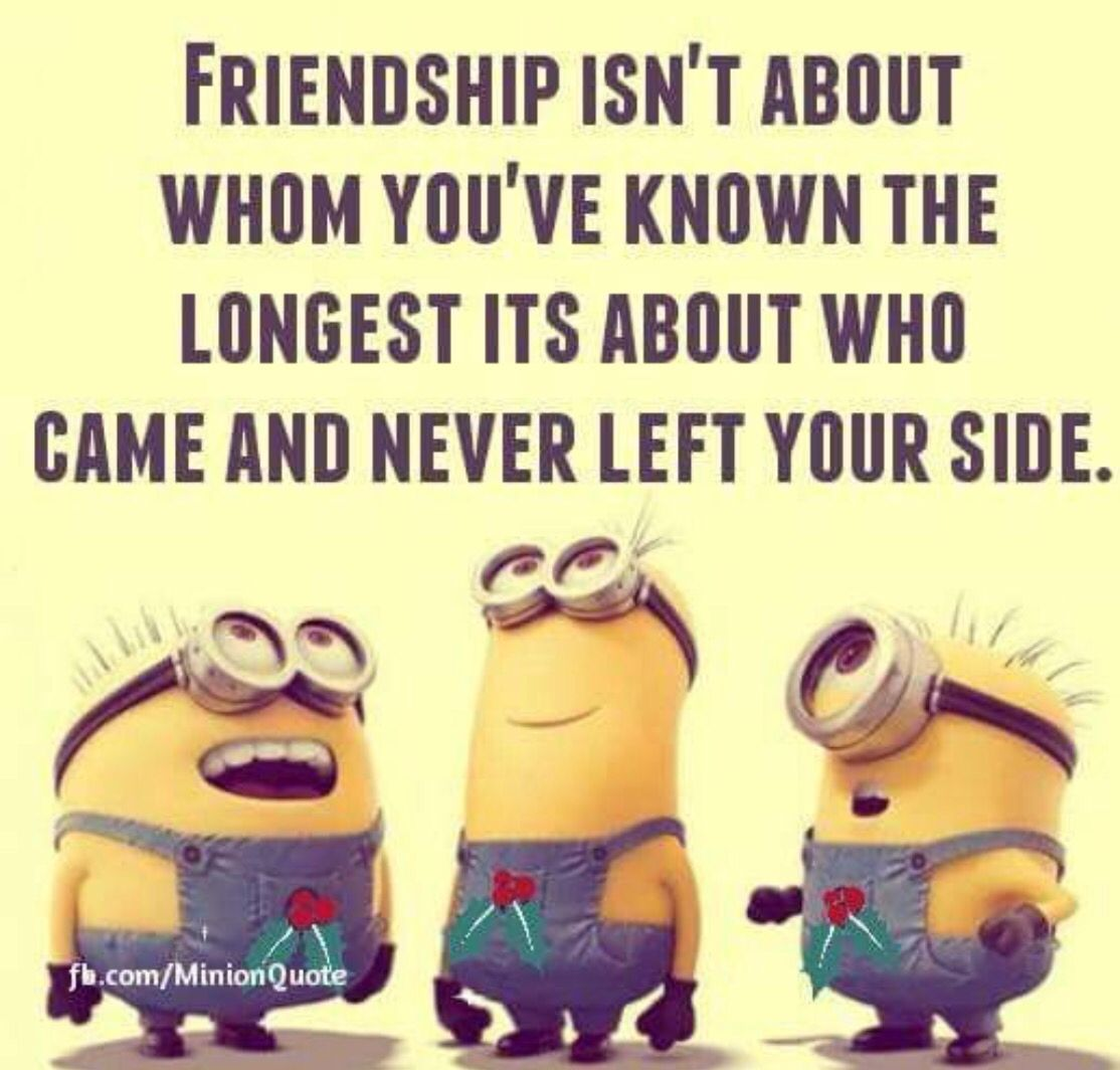 Silly Quotes About Friendship Minions  Minions  Pinterest