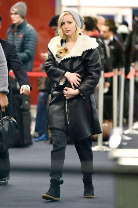 Like the rest of the country, J-Law is currently freezing her a** off. So to ensure that her pup Pippi was just as snug as she traipsed through the airport in an oversized leather and shearling coat yesterday, she bundled up her four-legged friend inside of her topper.