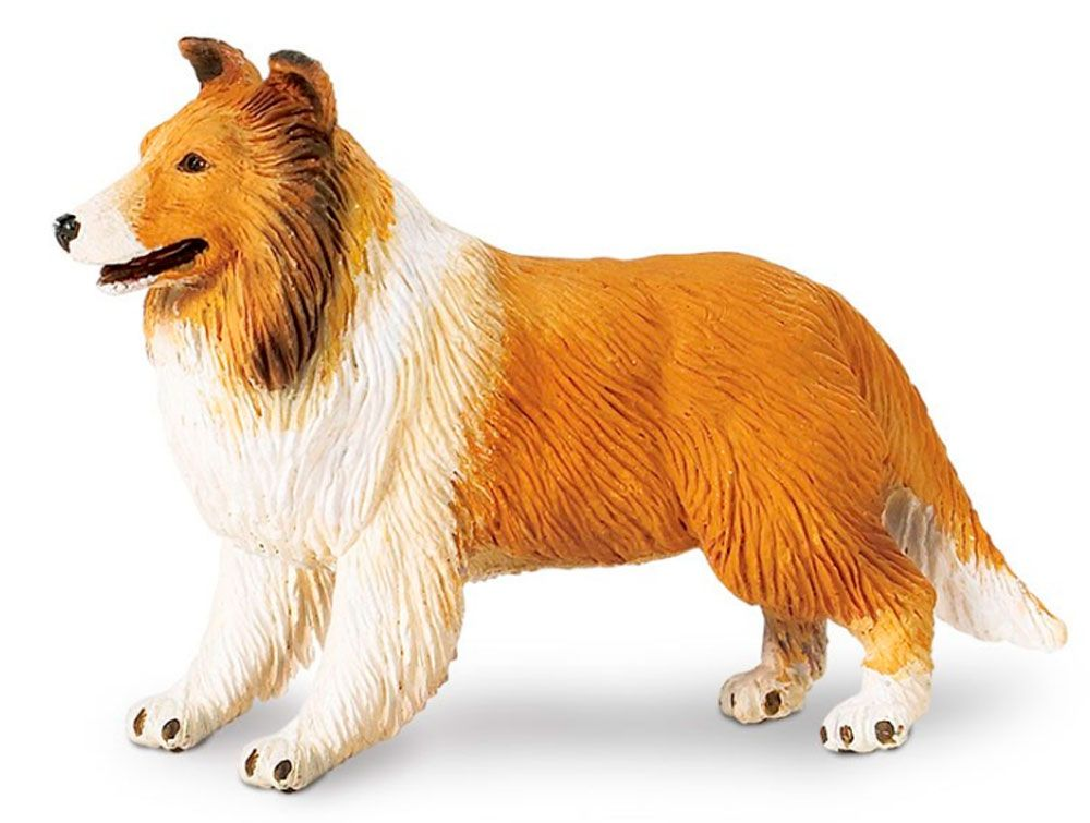 Collie Figurine Toy Dogs Collie English Dogs