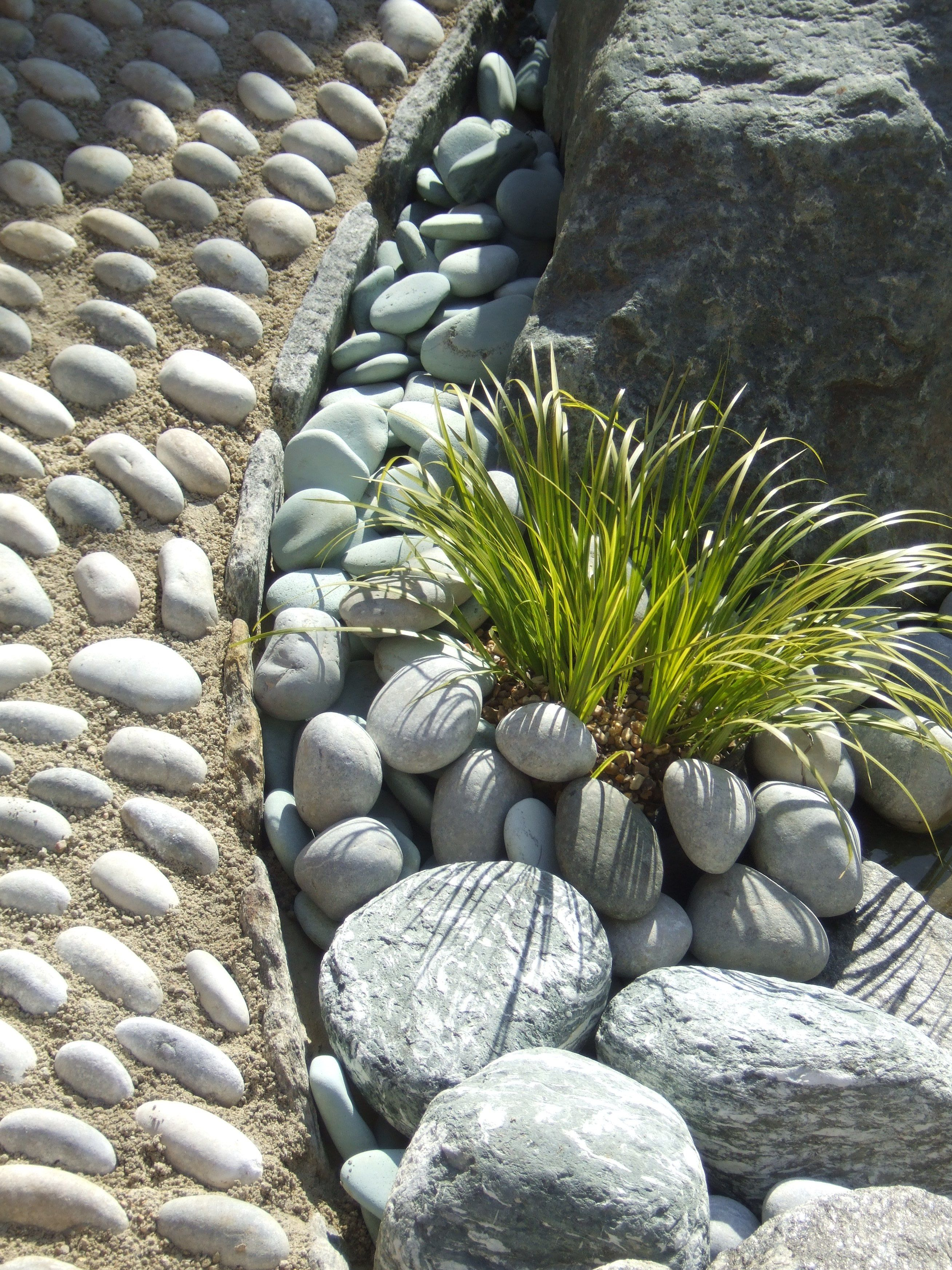 A pebble mosaic path at the margin of the pond.