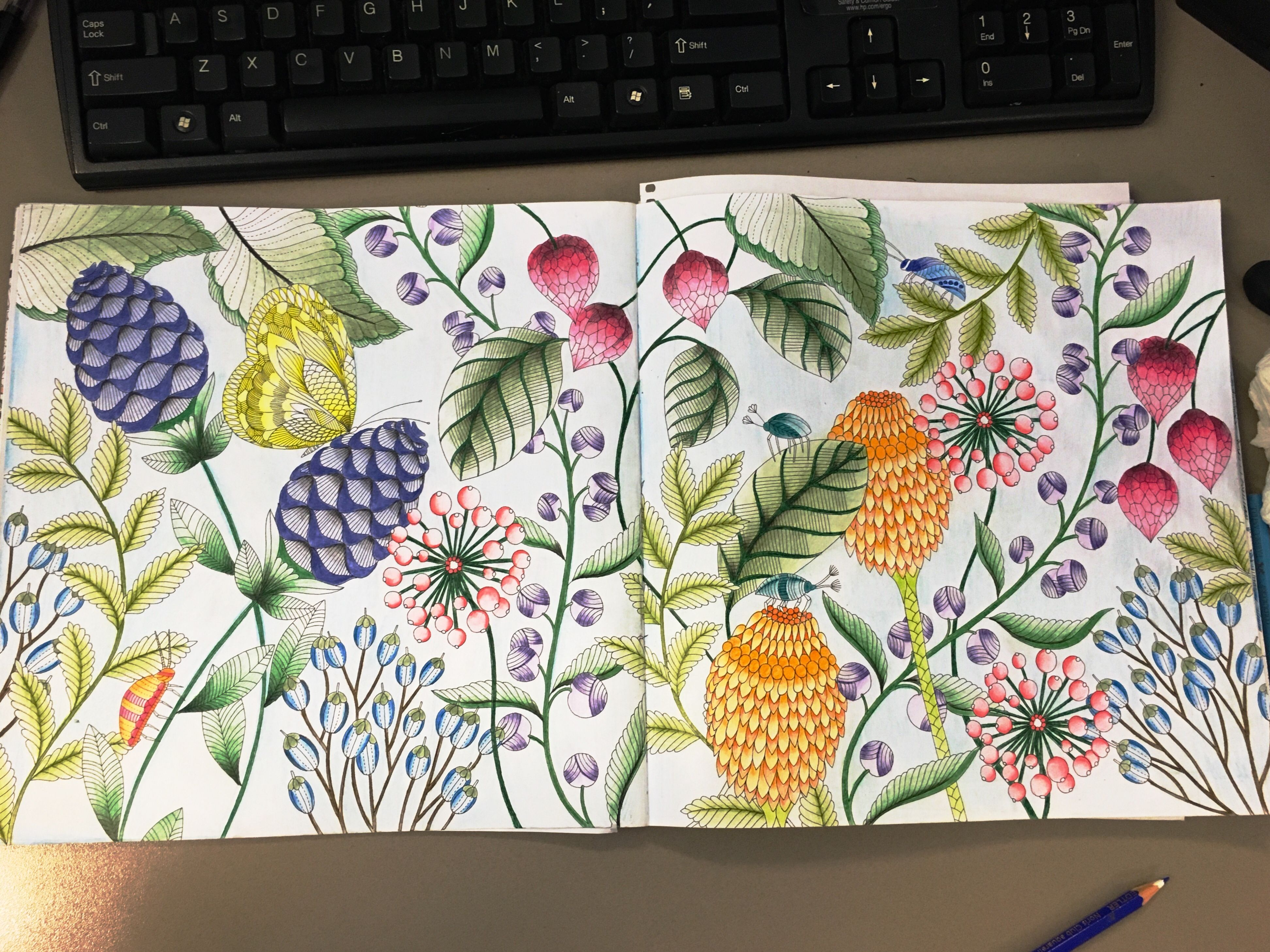 Tropical Wonderland Colouring Inspiration Coloring