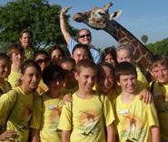Busch Gardens Tampa   Florida Theme Park Vacation