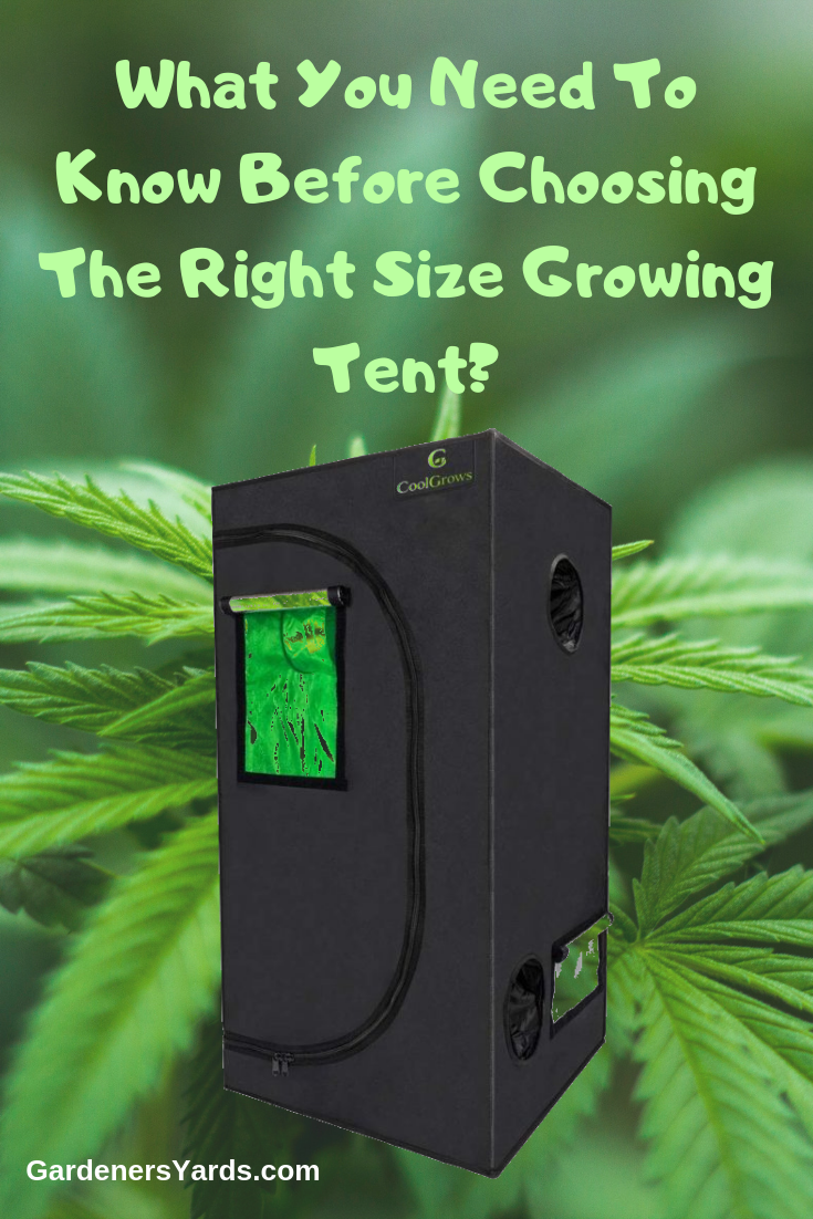 Best 2 2 Grow Tent Reviews And Comprehensive Buyer Guide Grow Tent Tent Reviews Tent