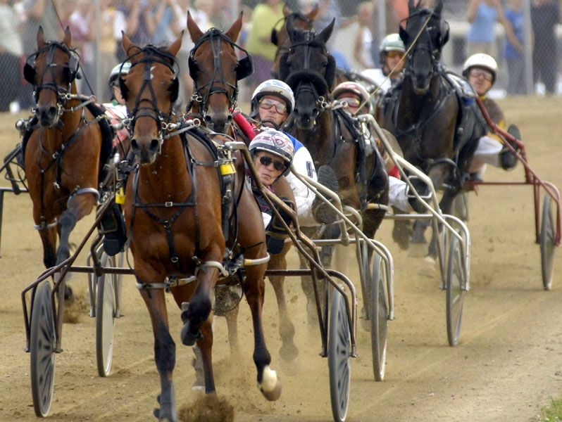 Did You Know  Unlike Thoroughbred Racing   Harnessracing Drivers Register And Wear Their Own