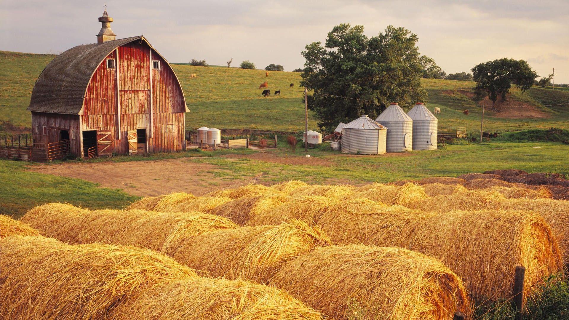 Wonderful Farm Scene Hd Wallpaper 602673 1920x1080