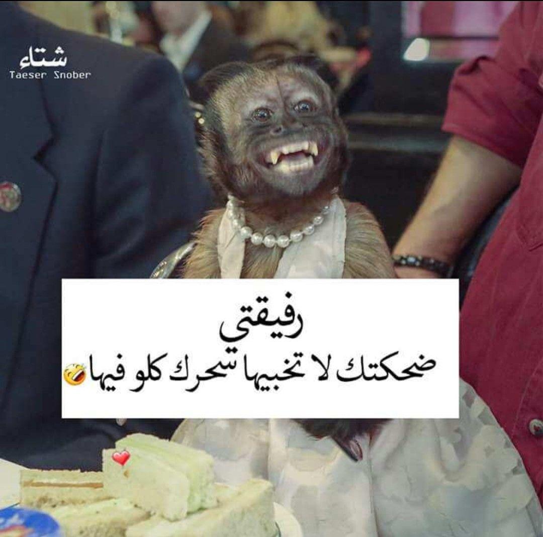 صديقتي هاهاها Arabic Jokes Arabic Words Humor