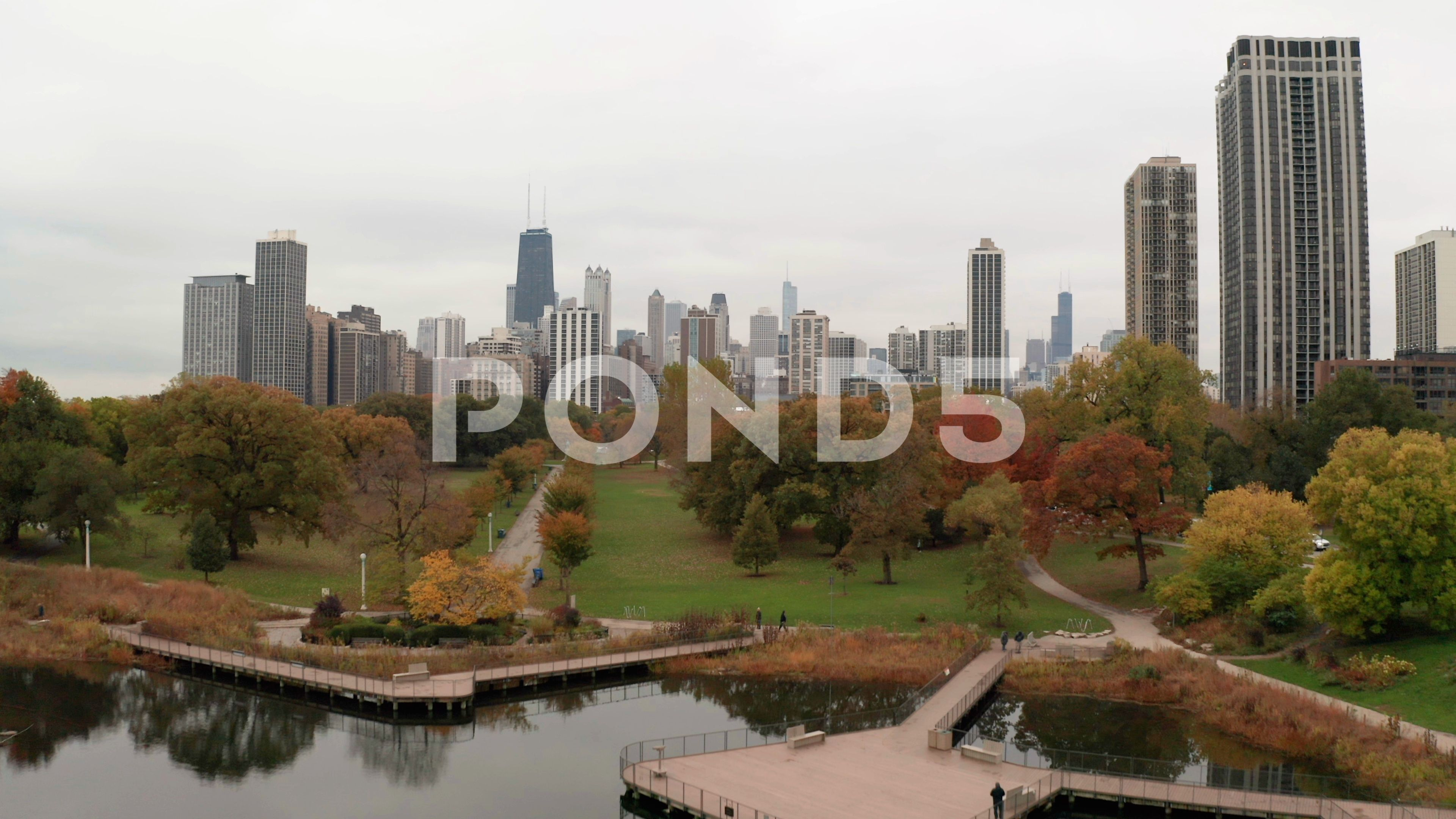 Chicago Downtown Aerial Fall Autumn Foliage Buildings Drone Flying Skyline Stock Footage Ad Fall Autumn Foliage Chicago In 2020 Fall Foliage Downtown Chicago Aerial