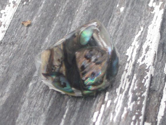 Size 7.5 Abalone Puau Shell Bubble Resin Ring by MonkeyNavigated