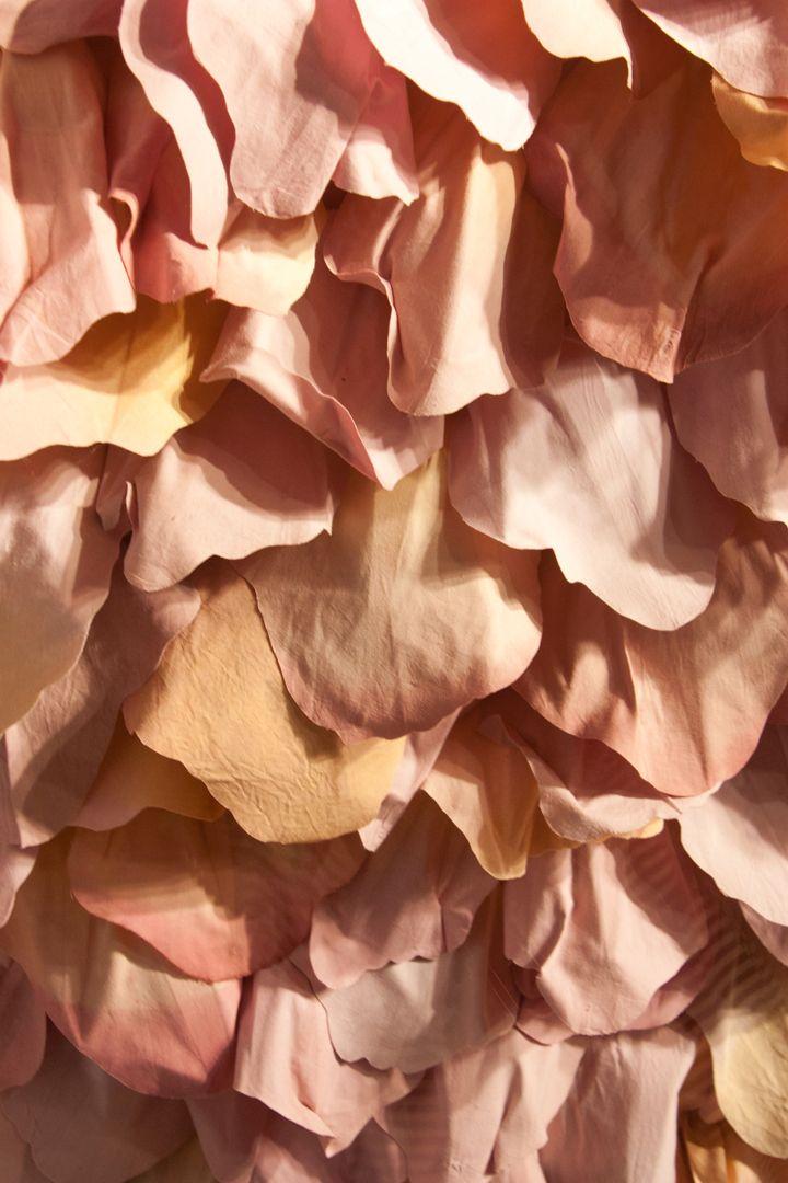 Pin By Home Design On Rhubarbe Colore Peach Tumblr Peach