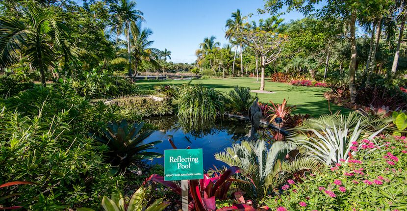 Naples Botanical Garden Information Tropical garden