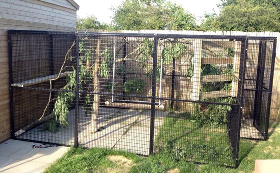 beautiful large movable pet enclosures   google search