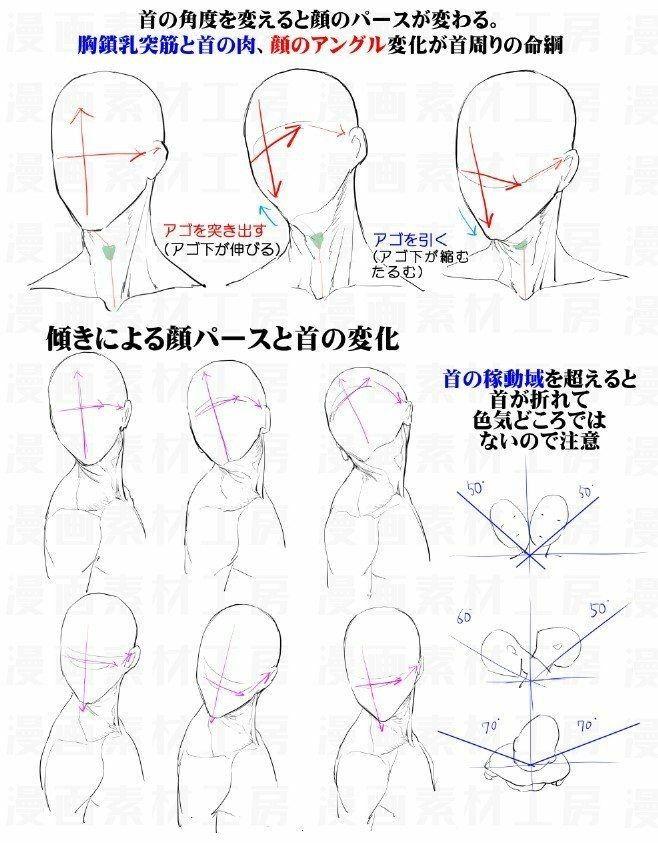 Pin de Max Bala en Anatomia | Pinterest | Anatomía, Dibujo y Dibujo ...