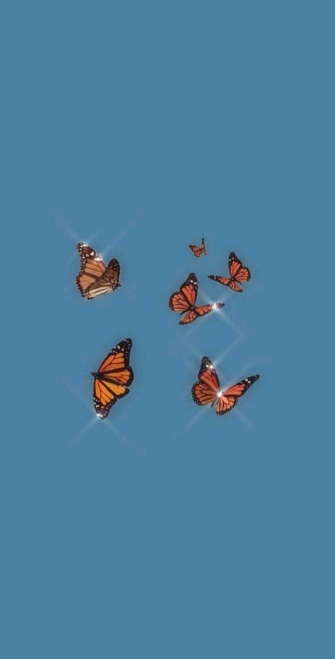 Butterfly Informations About Butterfly Pin You Can Easily