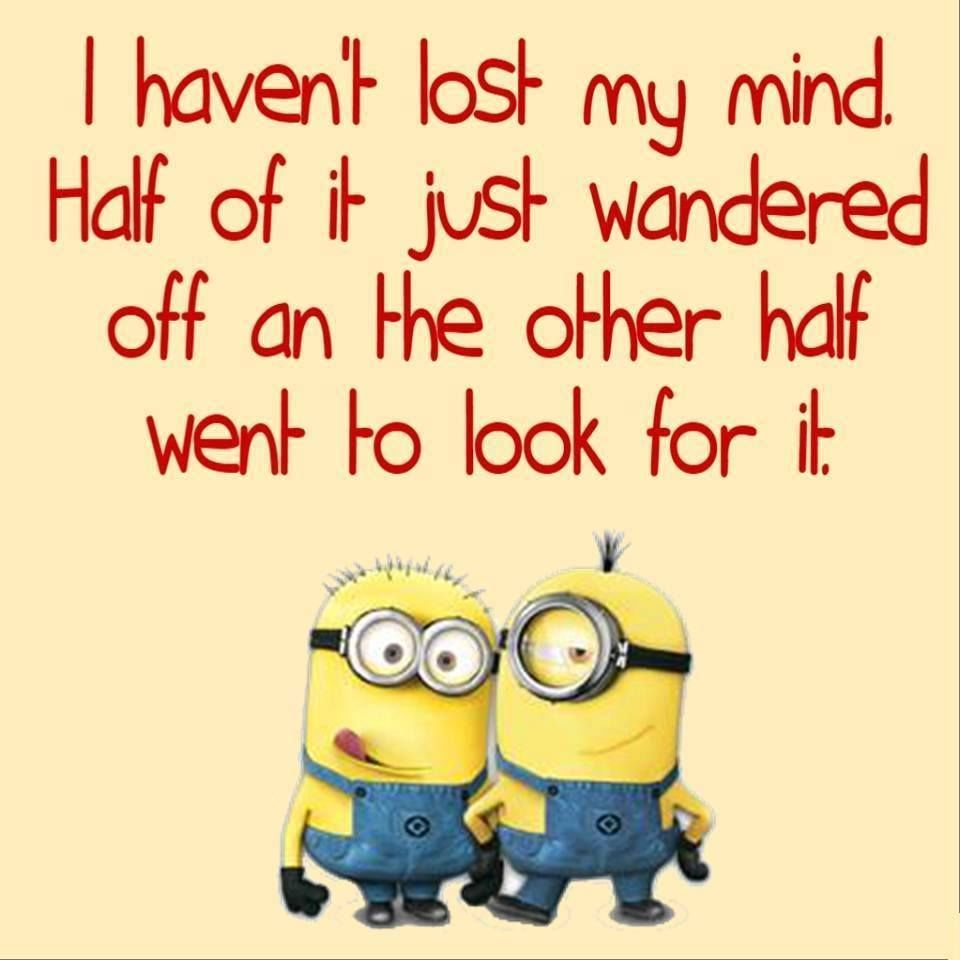 I haven't lost my mind. Half of it just wandered off an the other half went to look for it