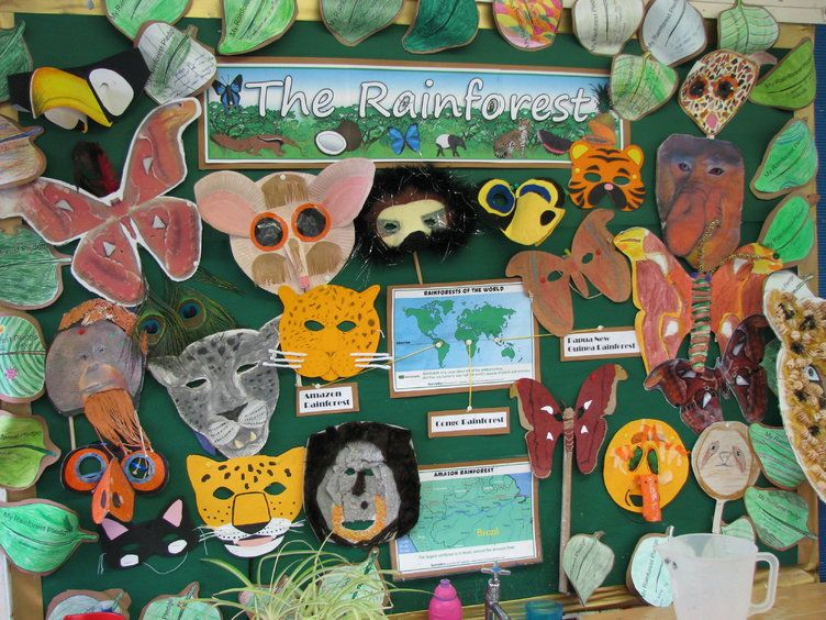 The Rainforet animals Display Bulletin Board Idea
