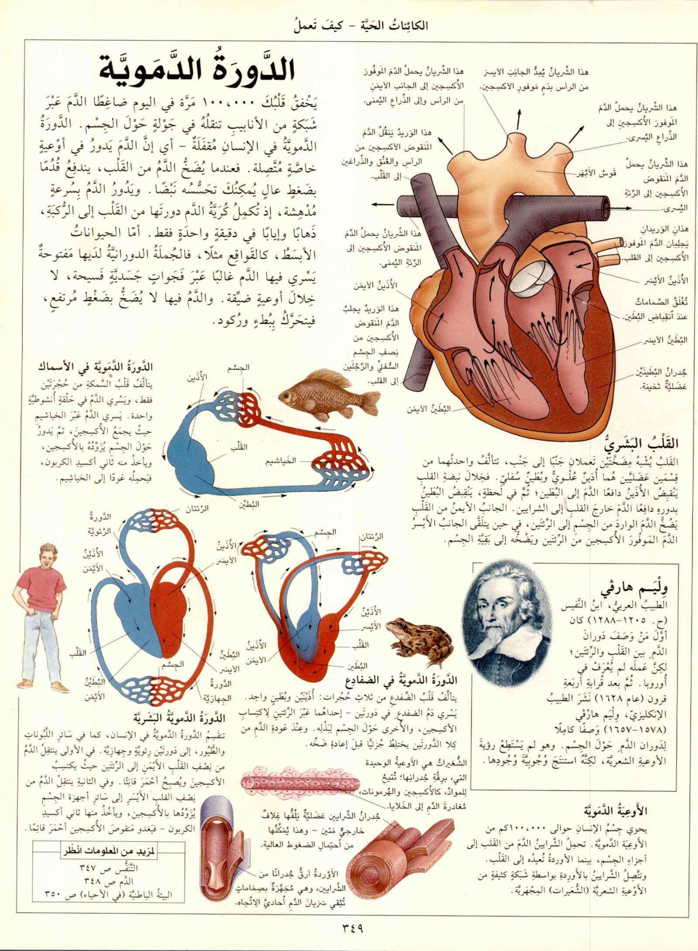الموسوعة العلمية الشاملة مكتبة لبنان ناشرون Free Download Borrow And Streaming Internet Archive In 2021 Medical Photos Study Apps Arabic Books