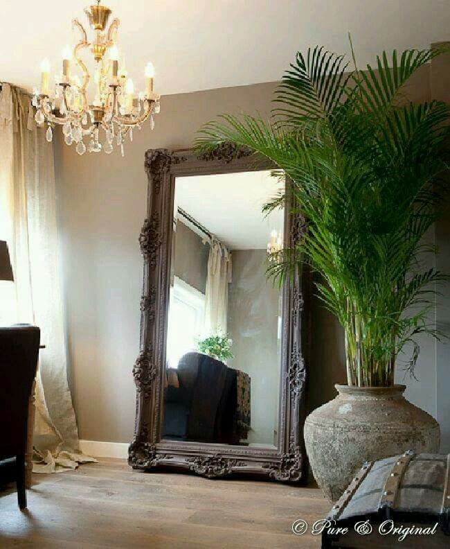 Floor Mirror And Butterfly Palm Corner In Livingroom Decor