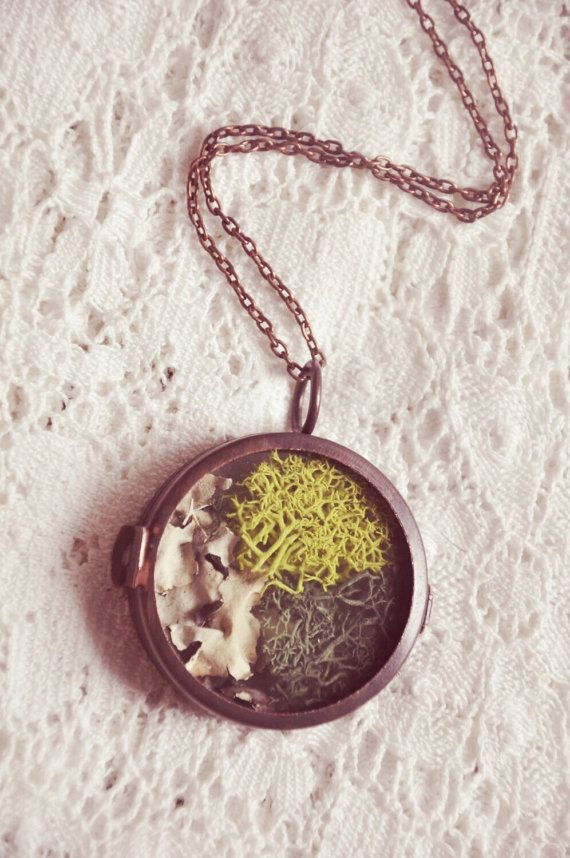Moss Garden Glass Terrarium Necklace Pinterest Moss Garden