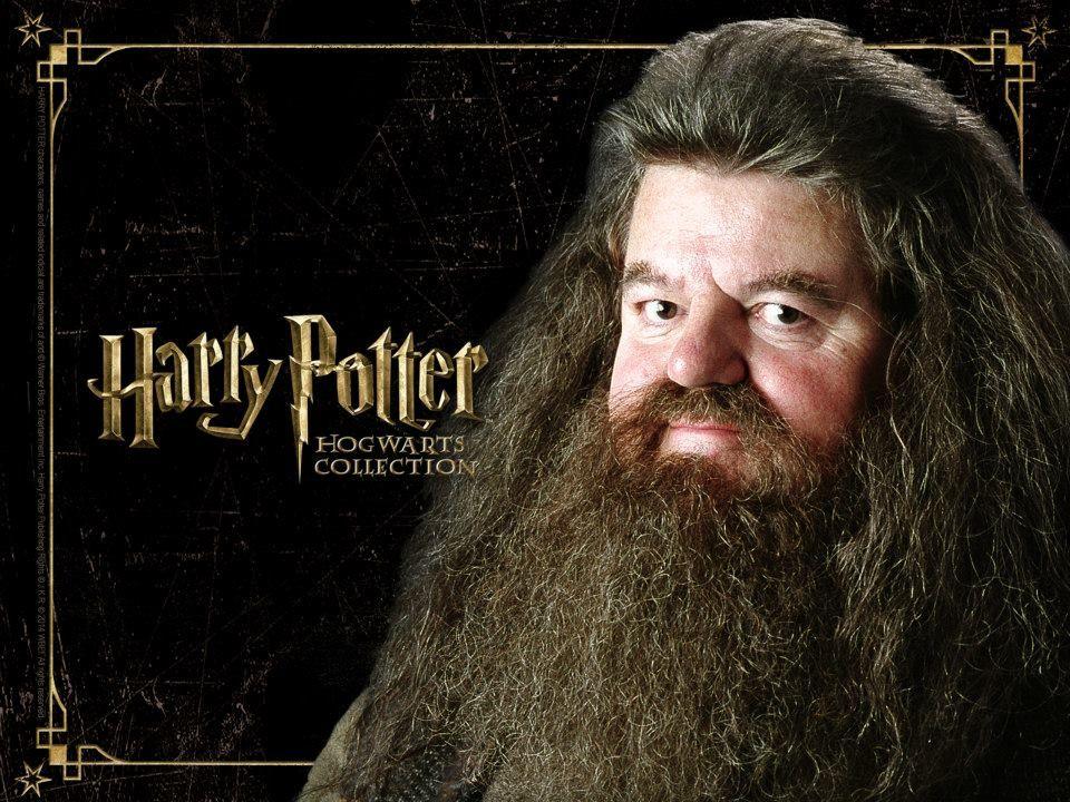 Rubeus Hagrid Harry Potter Bilder Harry Potter