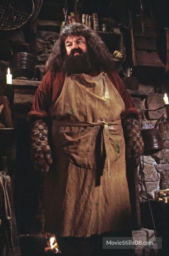 Harry Potter And The Sorcerer S Stone Publicity Still Of Robbie Coltrane Harry Potter Pictures Harry Potter Characters Harry Potter Wall