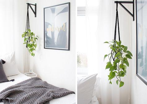 diy-hanging-planter-im-schlafzimmer-10jpg 800×570 Pixel 식물