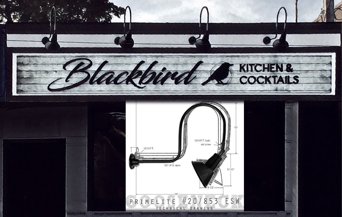 What Is The Buzzzzz In Wantagh Ny Black Bird Signage Newstead