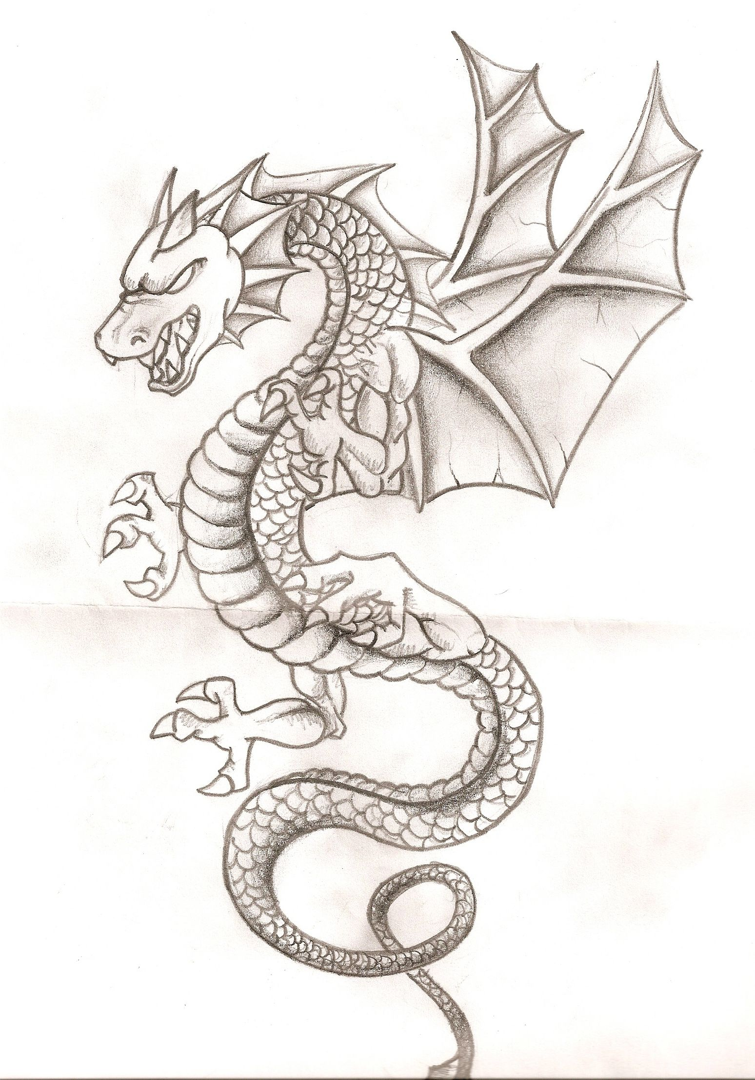 Pin De Payal En Dibujo De Dragon Dibujo De Dragon Dragon Para Dibujar Dragones