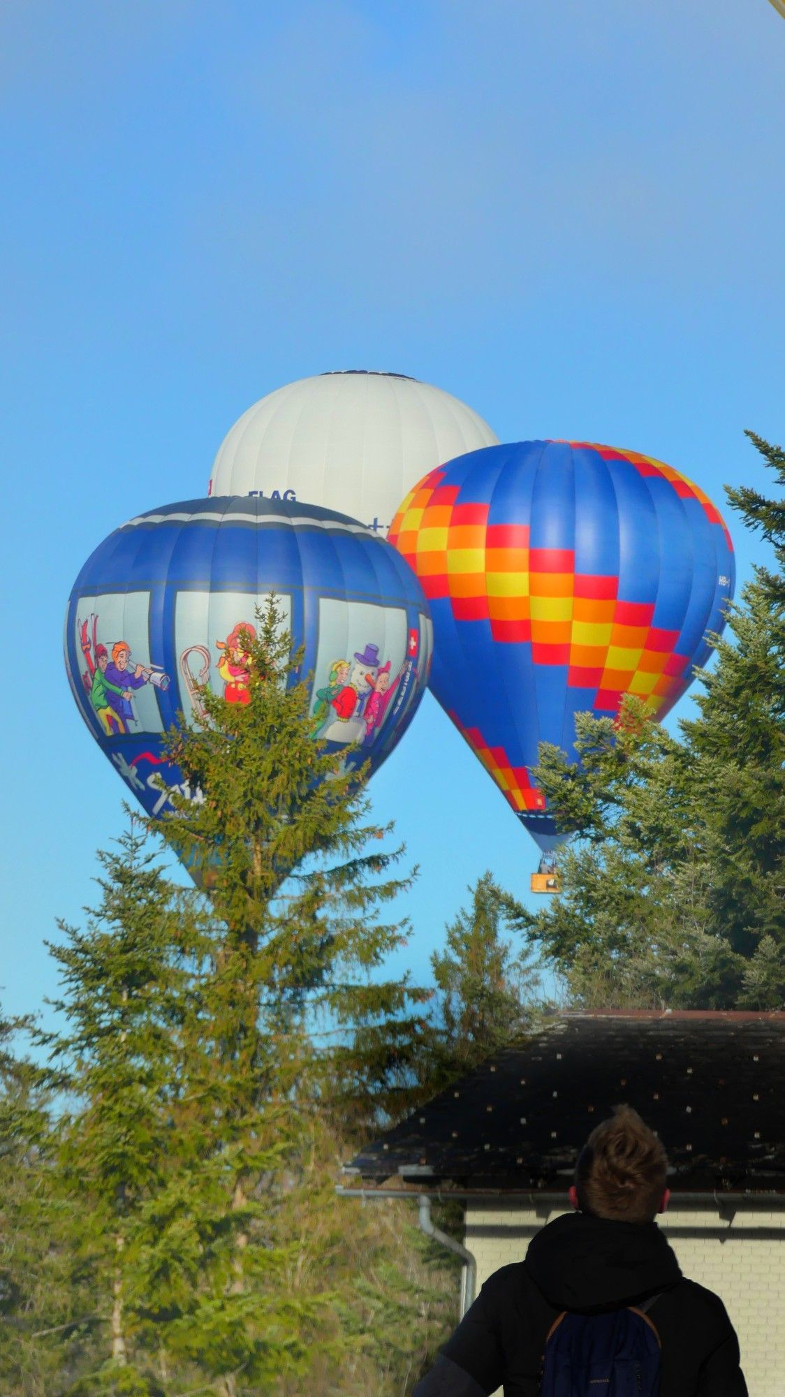 Hot air balloon festival switzerland in 2020