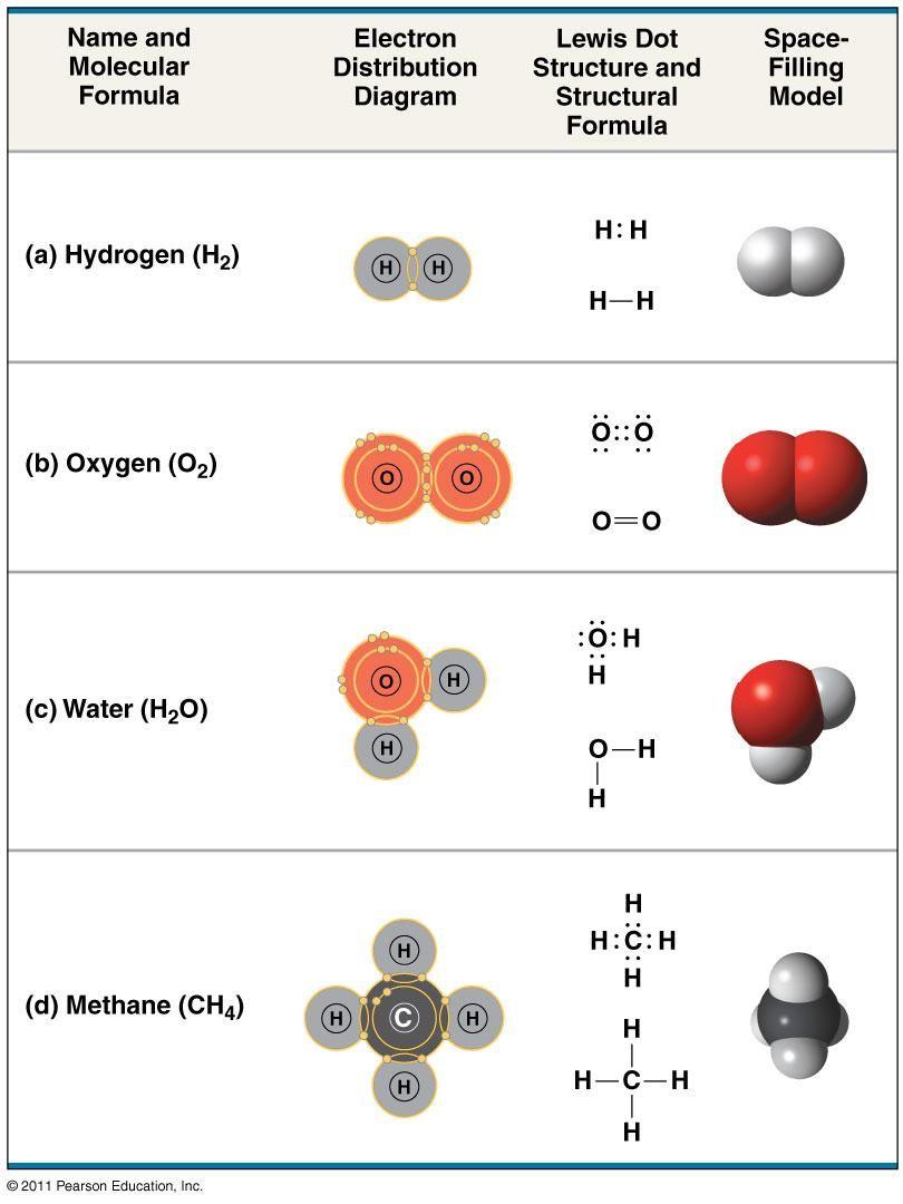 Covalent Bonds Molecular Teaching Science Science Classroom
